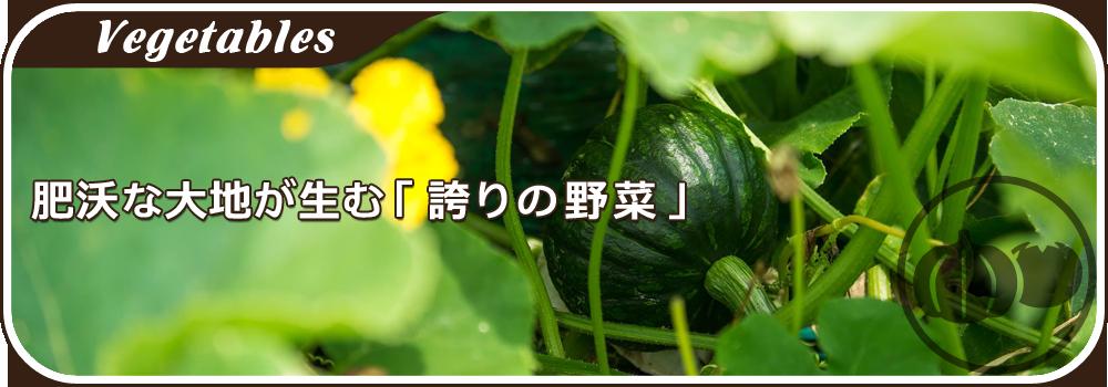 肥沃な大地が生む「誇りの野菜」