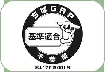 5_0_img23-1