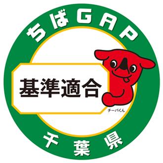 千葉GAP